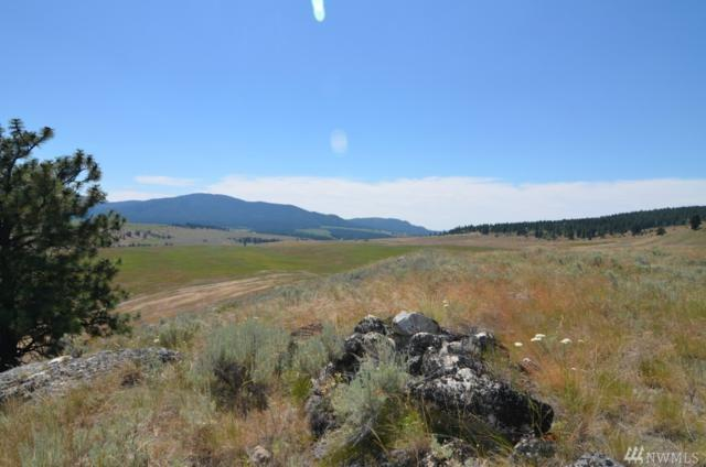 0-Lot 9 Dry Gulch Rd, Tonasket, WA 98855 (#1063746) :: Ben Kinney Real Estate Team