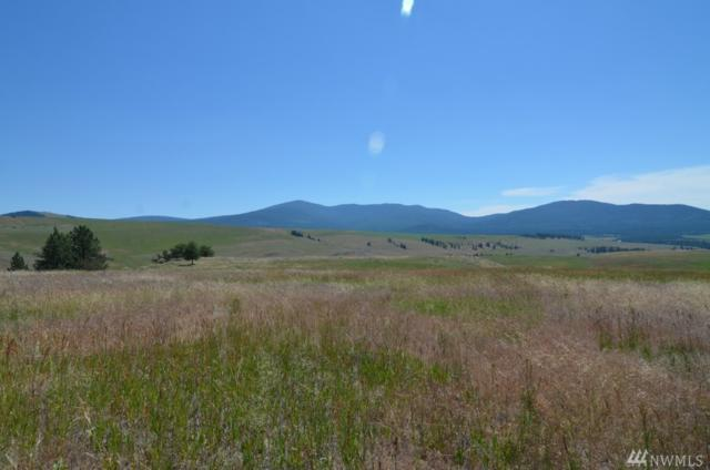 0-Lot 8 Dry Gulch Rd, Tonasket, WA 98855 (#1063747) :: Ben Kinney Real Estate Team