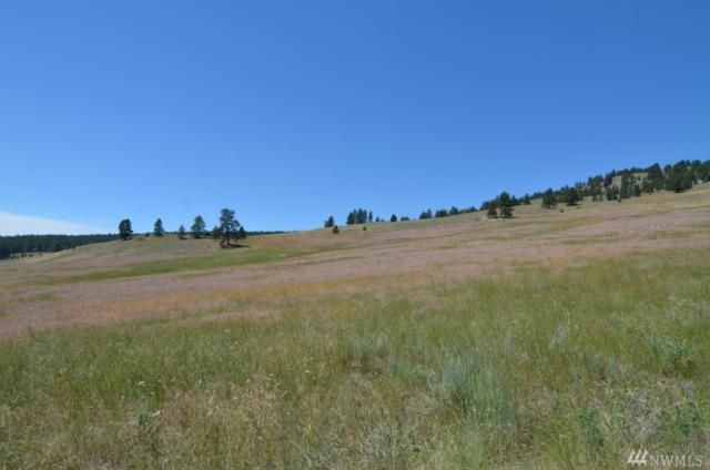 0-Lot 5 Dry Gulch Rd, Tonasket, WA 98855 (#1063748) :: Ben Kinney Real Estate Team