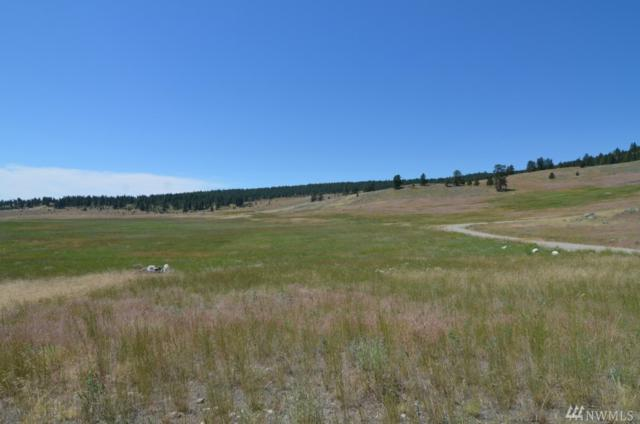 0-Lot 4 Dry Gulch Rd, Tonasket, WA 98855 (#1063749) :: Ben Kinney Real Estate Team