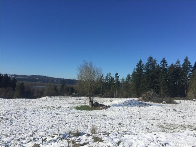 2-Lot Acredale Dr, Kalama, WA 98625 (#1064066) :: Ben Kinney Real Estate Team