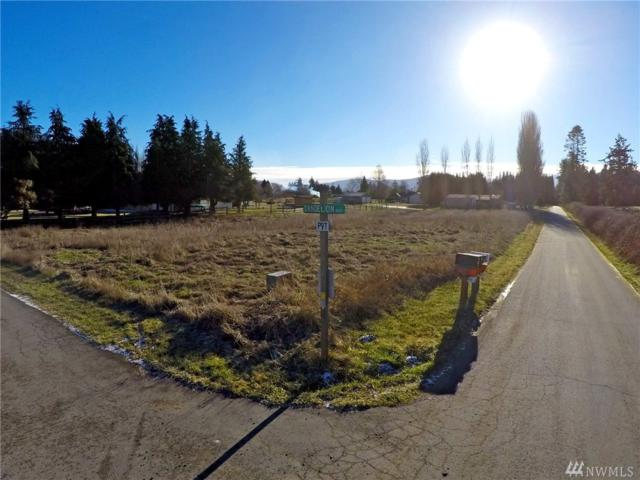 9999 Community Lane, Sequim, WA 98382 (#1066808) :: Ben Kinney Real Estate Team