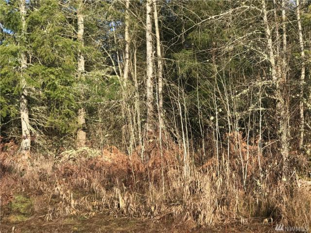 32800 40th Ave S Lot 2, Roy, WA 98580 (#1070140) :: Ben Kinney Real Estate Team