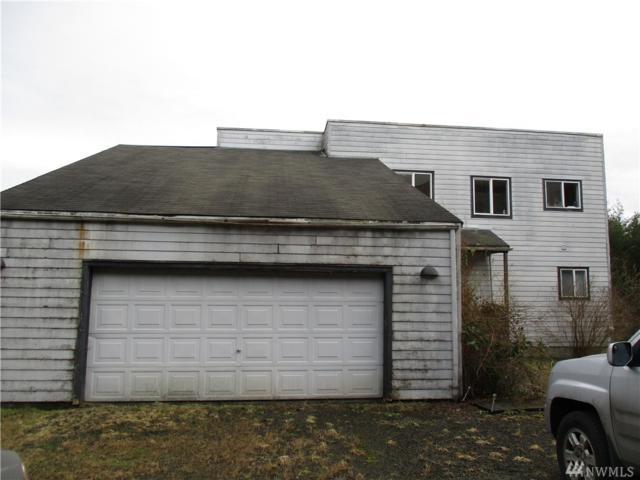 115 Glacier Ridge Rd, Quilcene, WA 98376 (#1070337) :: Ben Kinney Real Estate Team