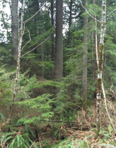 131 S Monte Cristo Way, Granite Falls, WA 98252 (#1070855) :: Ben Kinney Real Estate Team