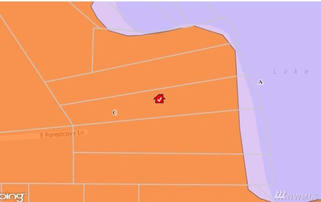 0 E Forestcove Lane, Shelton, WA 98584 (#1074848) :: Ben Kinney Real Estate Team