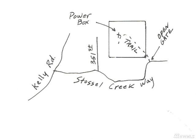 35600 NE Stossel Creek Wy, Duvall, WA 98019 (#1074873) :: Ben Kinney Real Estate Team