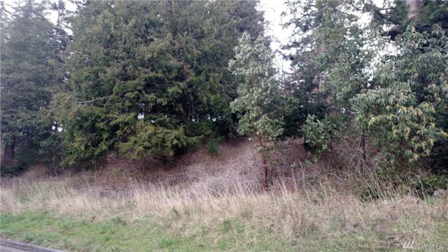 837 Briar Rd, Bellingham, WA 98225 (#1076162) :: Ben Kinney Real Estate Team