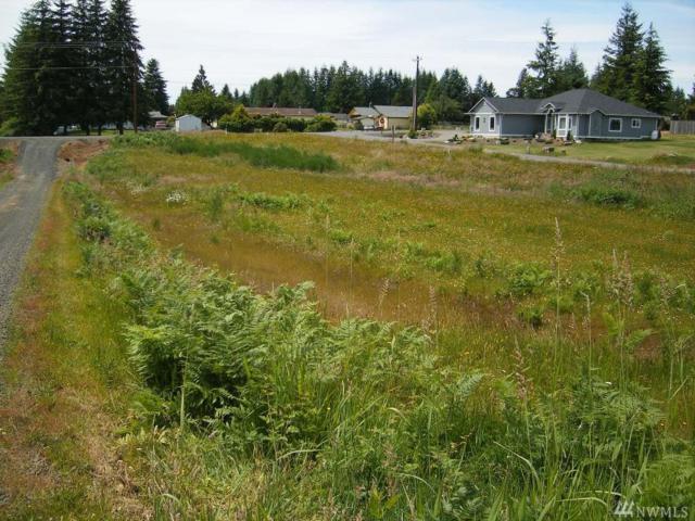 6 Grace Lane, Montesano, WA 98563 (#1077114) :: Ben Kinney Real Estate Team