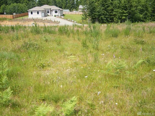 12 Grace Lane, Montesano, WA 98563 (#1077130) :: Ben Kinney Real Estate Team