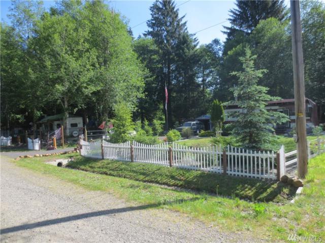 50 W Quallayute Trail, Shelton, WA 98584 (#1077211) :: Ben Kinney Real Estate Team