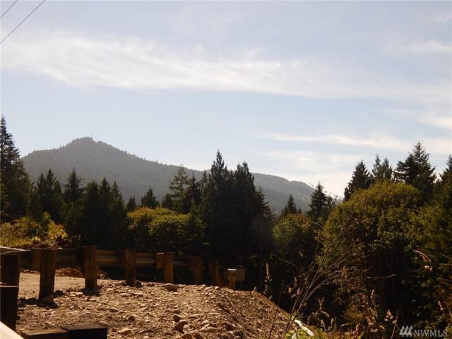 9999 Highway 101, Port Angeles, WA 98363 (#1078179) :: Ben Kinney Real Estate Team