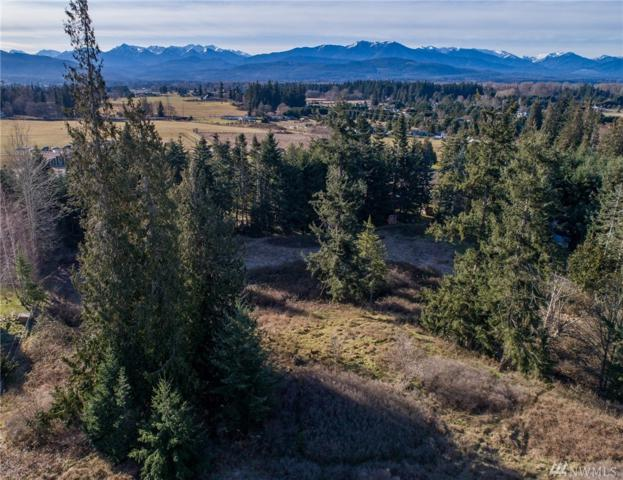 9999 Cedar Hill Ln, Sequim, WA 98382 (#1079356) :: Ben Kinney Real Estate Team