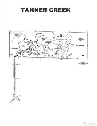 44110 SE 159th St, North Bend, WA 98045 (#1079729) :: Ben Kinney Real Estate Team
