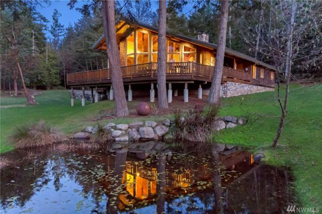 156 Rose Mountain Rd, Friday Harbor, WA 98250 (#1080004) :: Ben Kinney Real Estate Team