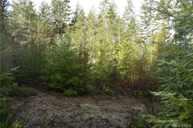 1301 E Benson Lake Dr, Grapeview, WA 98546 (#1084304) :: Ben Kinney Real Estate Team