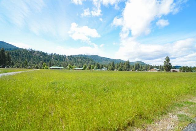 0 Alpine Acres Rd, Leavenworth, WA 98826 (#1084491) :: Ben Kinney Real Estate Team