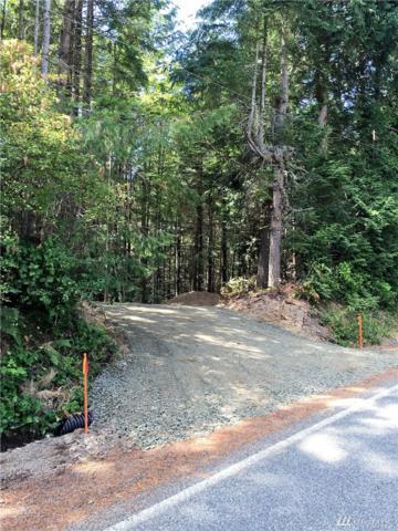2248 Seminary Hill Rd, Centralia, WA 98531 (#1084621) :: Ben Kinney Real Estate Team