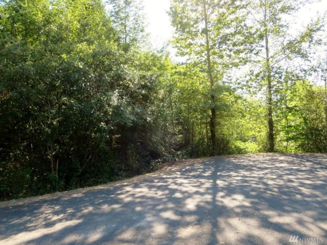 0 Tri Mountain Lane, Centralia, WA 98531 (#1084670) :: Ben Kinney Real Estate Team