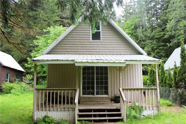 49015 Mountain Loop Hwy, Granite Falls, WA 98252 (#1084937) :: Ben Kinney Real Estate Team