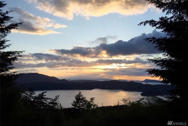 0 Hidden Ridge Trail, Orcas Island, WA 98245 (#1086446) :: Ben Kinney Real Estate Team