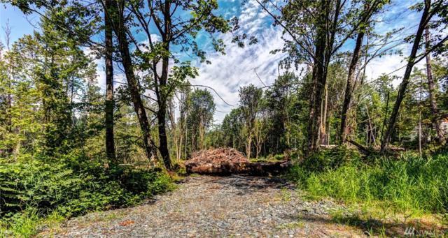 0 Squalicum Mountain Road, Bellingham, WA 98226 (#1089010) :: Ben Kinney Real Estate Team