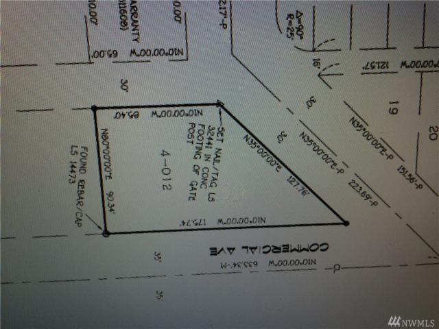 48-XX Commercial Ave, Everett, WA 98203 (#1090008) :: Ben Kinney Real Estate Team