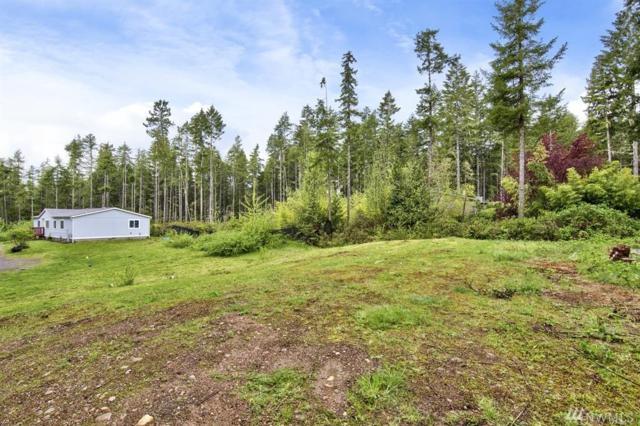 81 NE Mountain View Place, Tahuya, WA 98588 (#1090139) :: Ben Kinney Real Estate Team