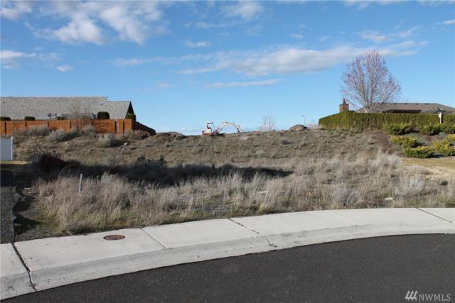 613 N Swan Lane, Moses Lake, WA 98837 (#1090151) :: Ben Kinney Real Estate Team