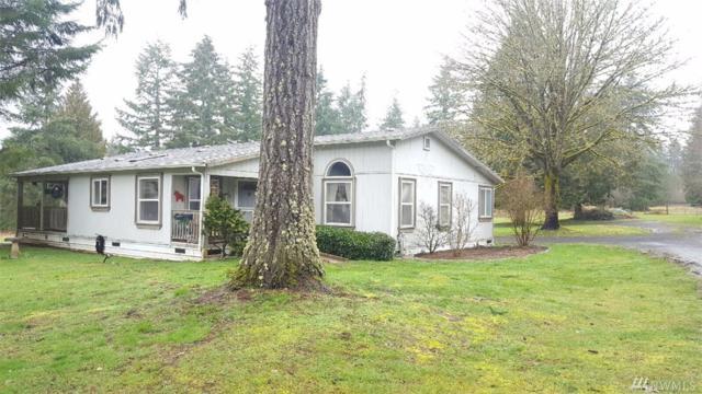 138 Pleasant Valley Rd, Winlock, WA 98596 (#1090595) :: Ben Kinney Real Estate Team
