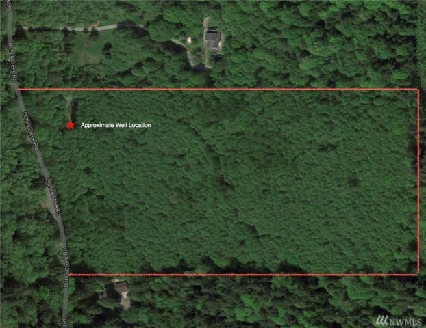 0 Butler Creek Rd, Sedro Woolley, WA 98284 (#1090604) :: Ben Kinney Real Estate Team