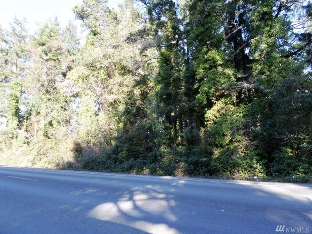 219-XX Pacific Hwy, Ocean Park, WA 98640 (#1092056) :: Ben Kinney Real Estate Team