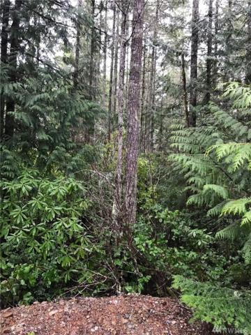 0 NE Kissin Tree Lane, Tahuya, WA 98588 (#1092633) :: Ben Kinney Real Estate Team