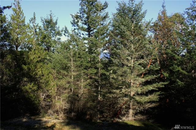 0 Harborview Lane, Orcas Island, WA 98245 (#1095650) :: Homes on the Sound