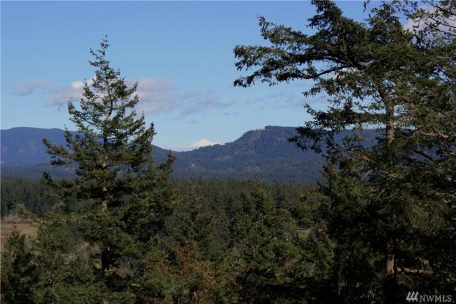 0 Harborview Lane, Orcas Island, WA 98245 (#1095998) :: Homes on the Sound
