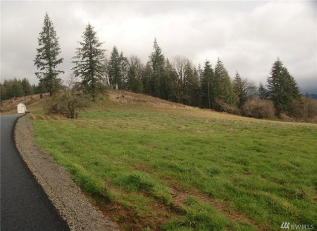 0 Witherbee Lot 5 Rd, Kelso, WA 98626 (#1096018) :: Ben Kinney Real Estate Team