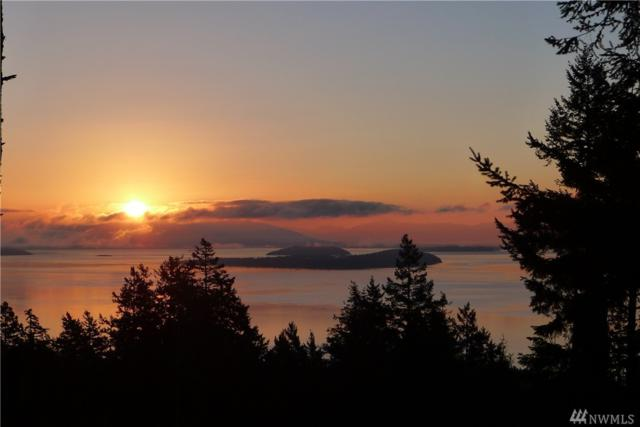 0 Glorious Place, Orcas Island, WA 98279 (#1097332) :: Ben Kinney Real Estate Team