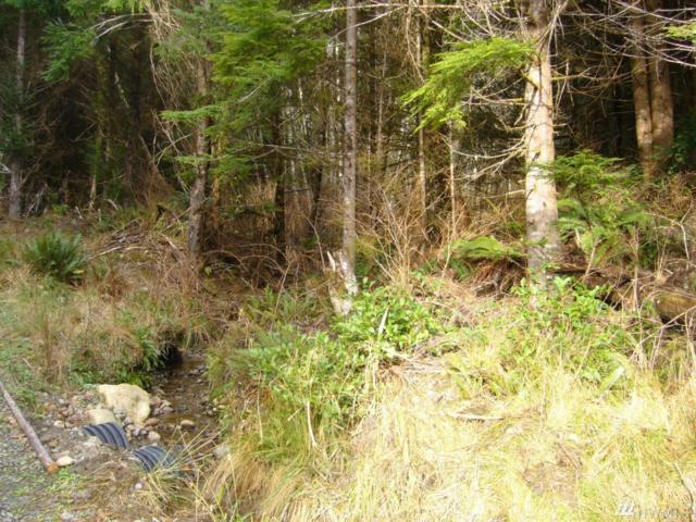 999-SAE Upper Oil City, Ocean Trail Trail W, Forks, WA 98331 (#1097426) :: Ben Kinney Real Estate Team