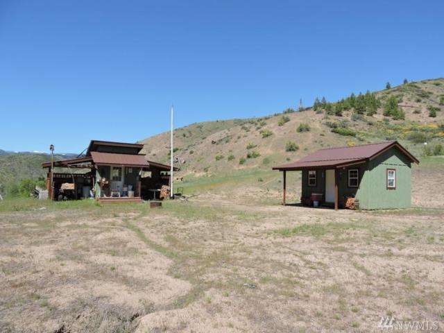 10583 Mud Creek Rd, Entiat, WA 98822 (#1097473) :: Ben Kinney Real Estate Team