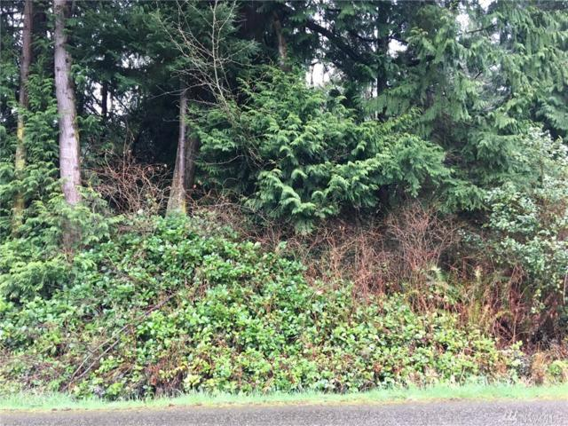 1-TBD E Marrowstone Rd, Nordland, WA 98358 (#1097623) :: Ben Kinney Real Estate Team