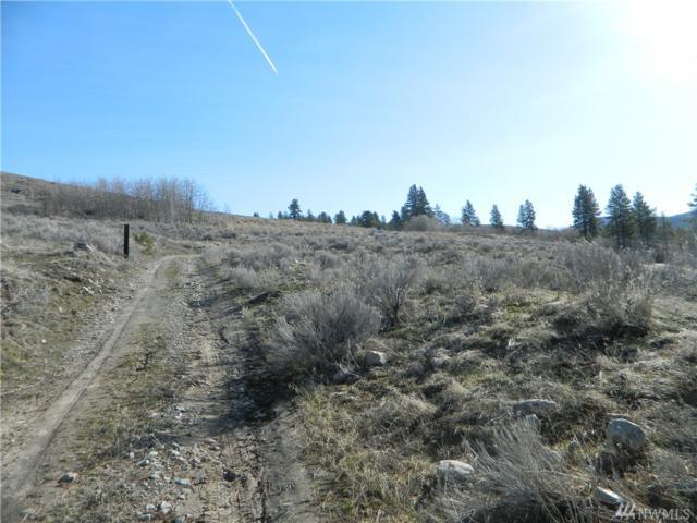1111 Tbd Siwash Creek Rd, Tonasket, WA 98855 (#1099296) :: Ben Kinney Real Estate Team