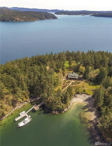 10 Big Double Island, Orcas Island, WA 98245 (#1100223) :: Ben Kinney Real Estate Team