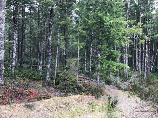 0 E Pacific Ridge, Shelton, WA 98584 (#1100224) :: Ben Kinney Real Estate Team