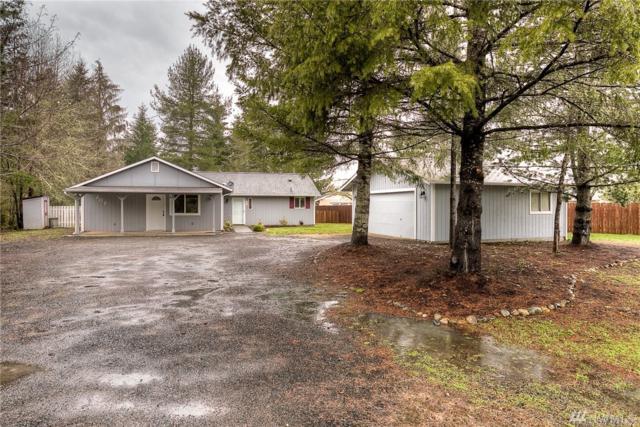207 E Nikki Lane, Belfair, WA 98528 (#1102049) :: Ben Kinney Real Estate Team