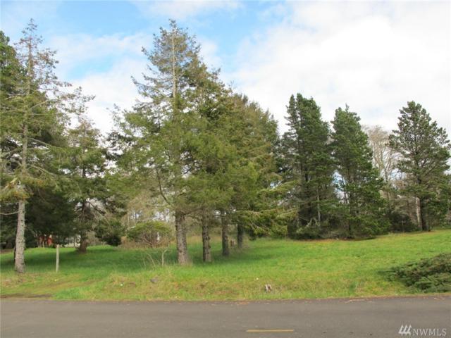22602 V St, Ocean Park, WA 98640 (#1102123) :: Ben Kinney Real Estate Team