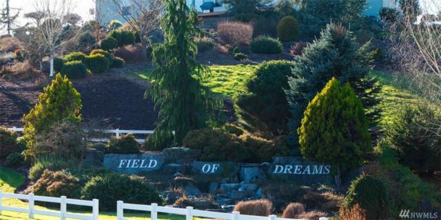 12233 Dream St SW, Olympia, WA 98512 (#1102403) :: Ben Kinney Real Estate Team