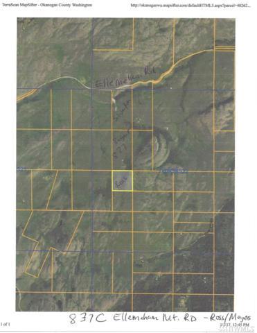 837-C TBD Ellemeham Mountain Rd, Oroville, WA 98844 (#1102923) :: Ben Kinney Real Estate Team