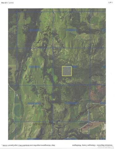 715-TBD Nealey (N Of 619) Rd, Oroville, WA 98844 (#1102924) :: Ben Kinney Real Estate Team