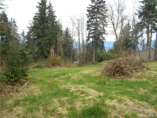 27229 176th Place SE, Monroe, WA 98272 (#1103203) :: Ben Kinney Real Estate Team