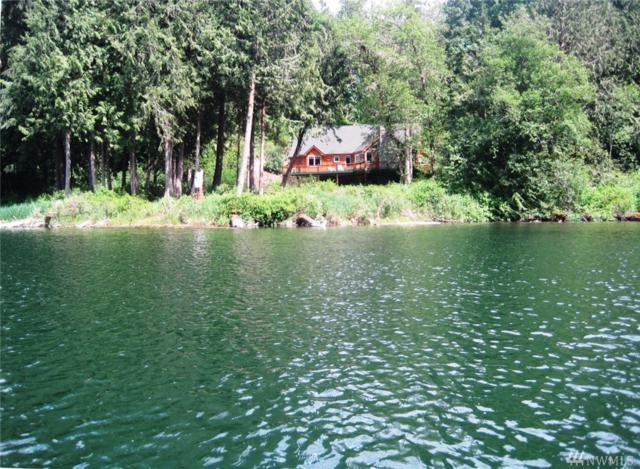 3017 Lake Langlois Rd NE, Carnation, WA 98014 (#1103272) :: Ben Kinney Real Estate Team